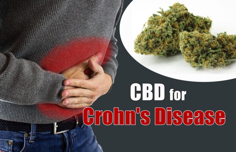 marijuanabreak_cbd_for_crohn_s_disease-768x494-1